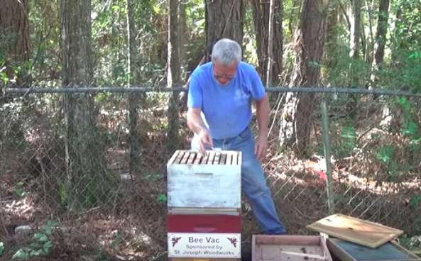 beekeeper, beehive