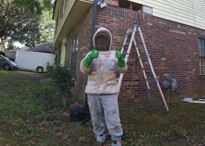 professional exterminator