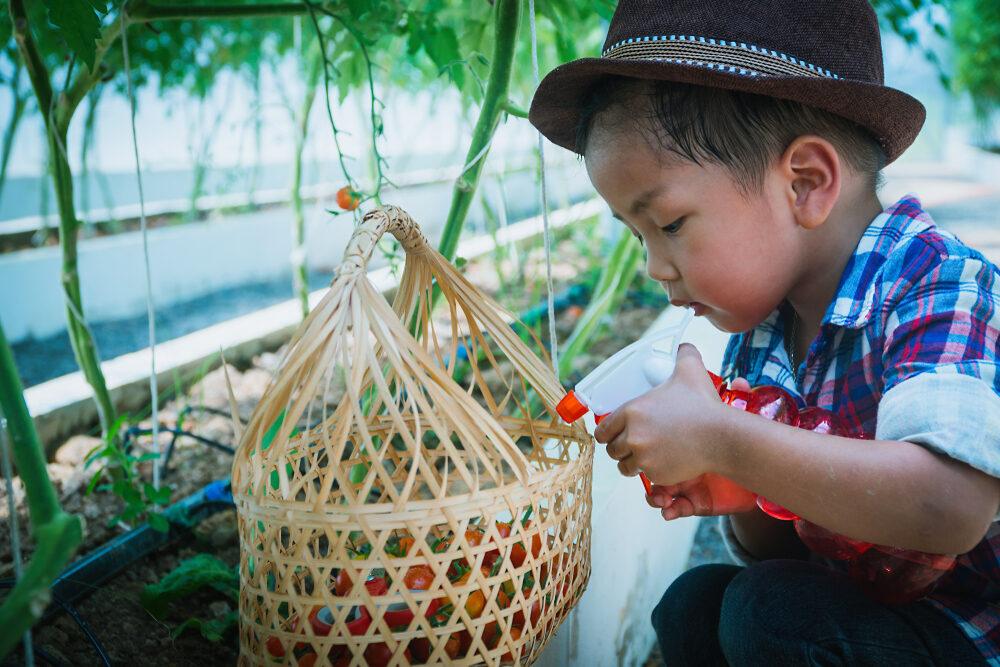 barn sprayar bekämpningsmedel på blomma